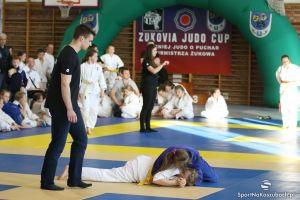 zukovia_judo_cup_2016_65.JPG