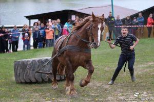 Wiśta wio, czyli na kaszubską nutę 2016 - mistrzostwa kaszubskich kuczerów w Ostrzycach