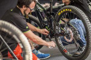 Kaszuby na Rowerze. Przygotuj swój rower do nowego sezonu - skorzystaj ze wskazówek fachowców z serwisu