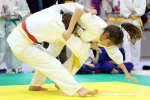 zukovia_judo_cup_2017_0246.jpg