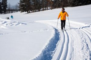 cross-country-skiing-624253_960_720.jpg