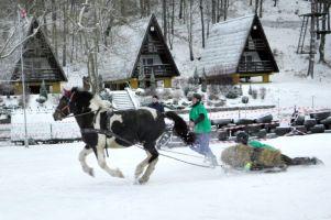 Kaszëbskô Szlópa w tym roku odwołana. Brak śniegu nie pozwala na rozegranie zawodów