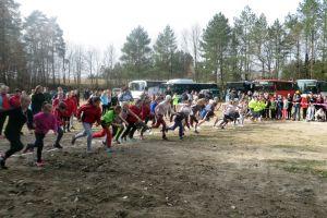Reprezentanci szkół rywalizowali w powiatowych i wojewódzkich finałach drużynowych biegów przełajowych