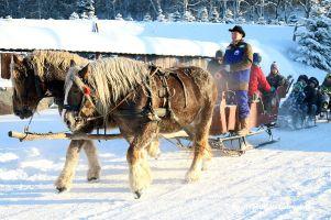 Kuligi w Szymbarku na Kaszubach. Ruszył sezon 2019, mnóstwo śniegu pod Wieżycą [TELEFONY DO WOŹNICÓW]