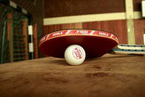 Gram z Pandą. 27 kwietnia pierwszy z dwóch turniejów tenisa stołowego w Sierakowicach