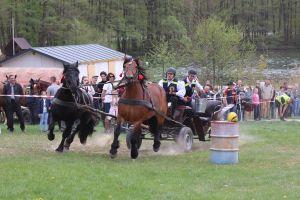 Woźnice i konie rywalizowali w zawodach Wiśta Wio w Ostrzycach