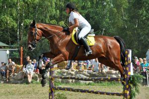 Amatorkskie zawody jeźdźców i kuczerów wkrótce w Kolanie