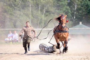 Zawody jeździeckie w Kolanie - filmik i druga część zdjęć