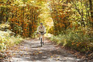 bike-4889742_960_720.jpg